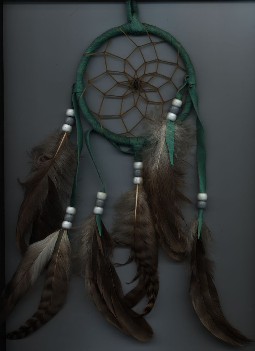 california the dream catcher for the A native american dream catcher created for the survivors of the columbine high school mass shooting became a healing symbol  california.